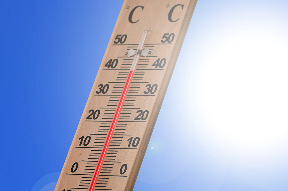 Thermometer zeigt 39 Grad Cellcius