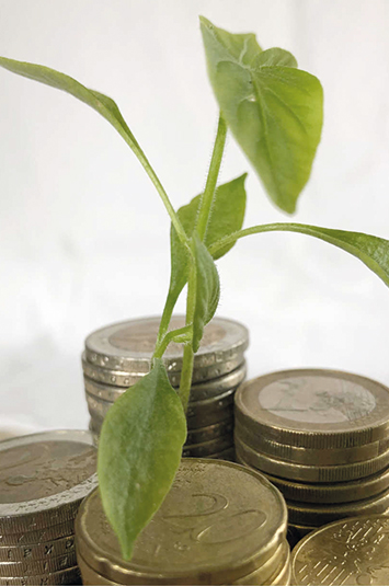 Zarte Pflanze wächst zwischen Münzstapeln