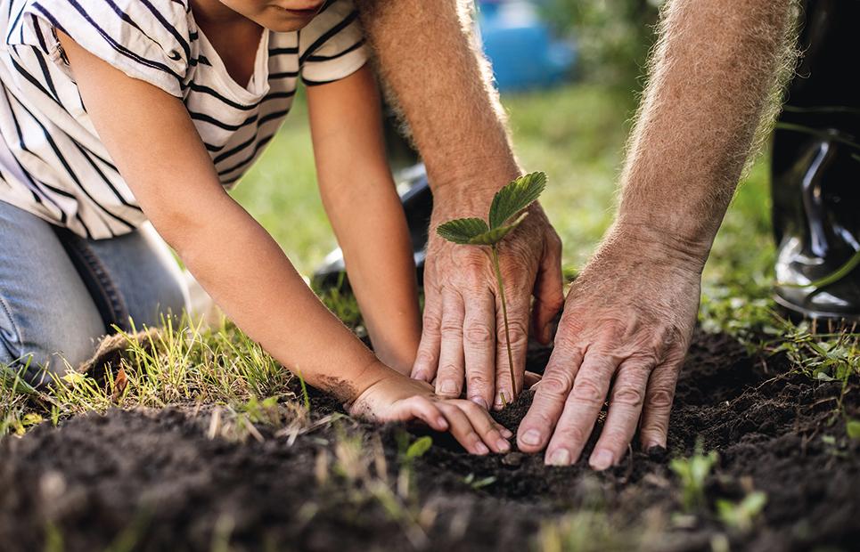 Nachhaltigkeit – eine enkeltaugliche Zukunft